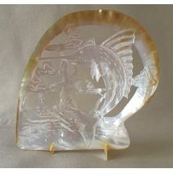 Huître Perlière Sculptée Espadon 15/20cm lot de 1