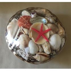 25cm basket filled with shells