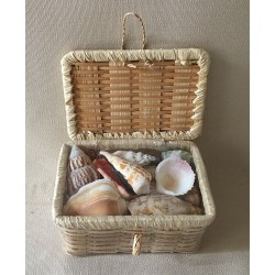 Mini basket 10x15cm filled with shells