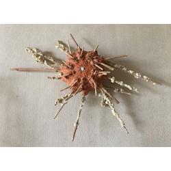 Oursin Granularis 12/15cm lot de 3