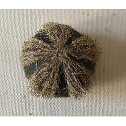 Oursin Globulus avec Piquants lot de 3