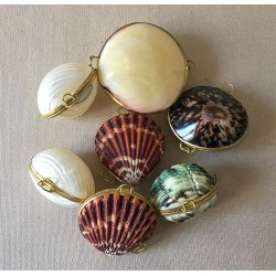 Purse Assorted Shells lot of 24