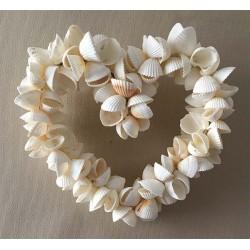 Cœur en coques Blanches 20cm lot de 3