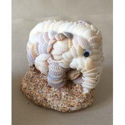 Elephant Shells 9/10cm batch of 6