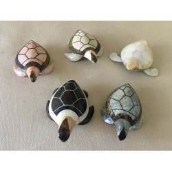 Turtle Mother-of-pearl Models Assorted lot of 12