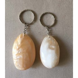 1004 KEY RING  SHELL PEARLY  per 25
