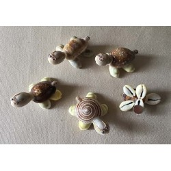 Magnets Tortue Coquillages lot de 10