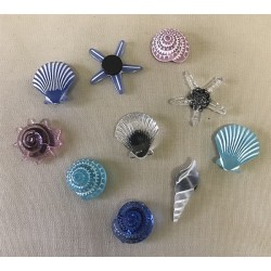 Magnet mini shells resin 4cm - set of 72