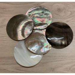 Pendentif Coquillage Nacre Percé 7cm lot de 6