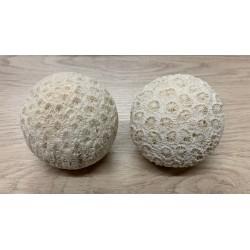 Boule en corail 6cm de diamètre
