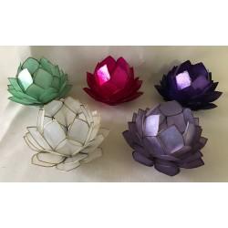 Bougeoir fleur lotus capiz couleurs assorties diam. 14cm par 5