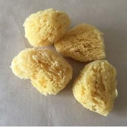 Natural Mediterranean Sponge 7.5/10cm batch of 12