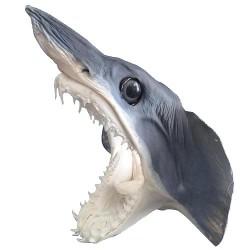 Mako shark head 25/28cm sold by 1