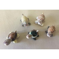 Turtle Mini Assortment of 10 - set of 10