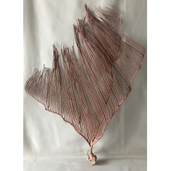 Gorggone red spleen 60/70cm (24'' - 28'') by 1